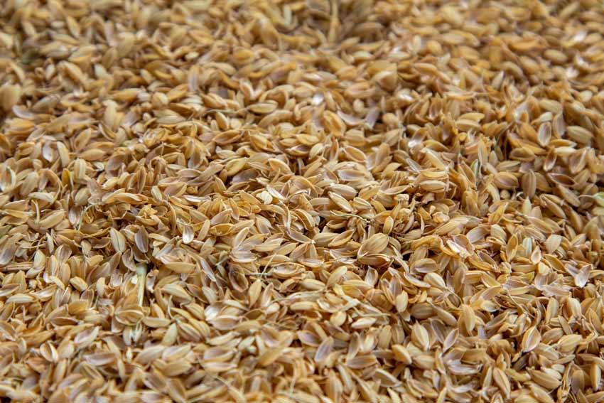 籾殻問題について
